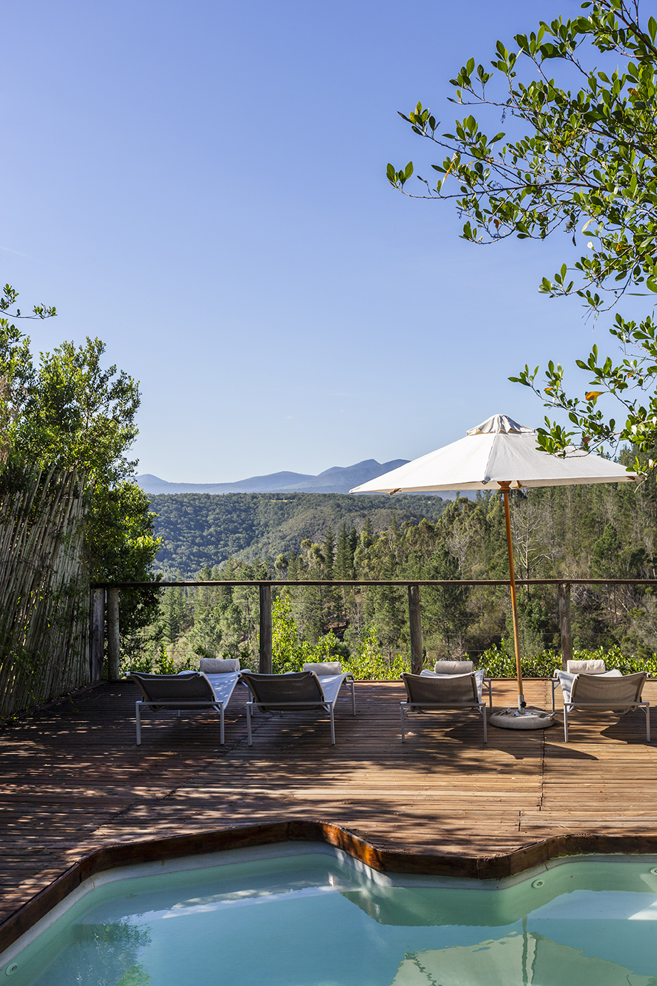 Forest Valley Cottages Knysna pool view