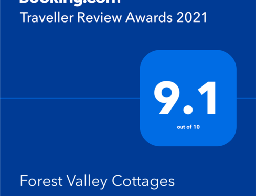Forest Valley Awarded Exceptional Rating for Traveller Review Awards 2021